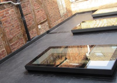 fixed-rooflights-1